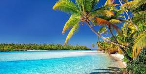 A beach view at The Cook Islands
