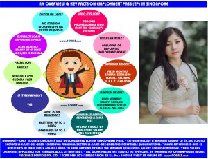 Infographic of the facts on Pmployment Pass with a girl